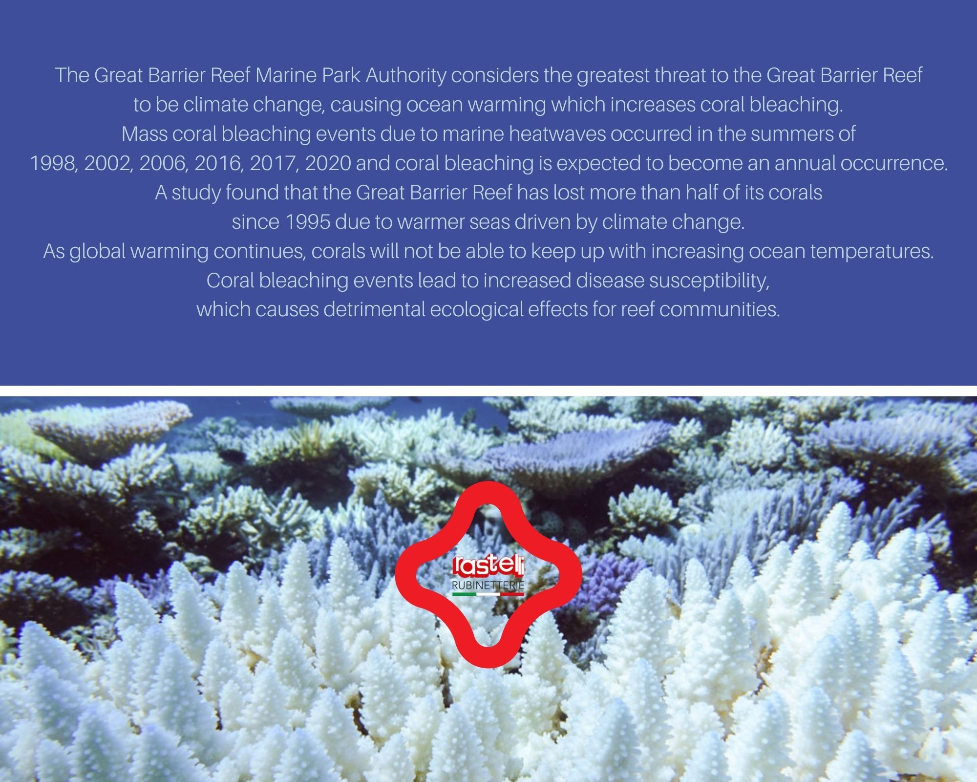 THE GREAT BARRIER REEF 2