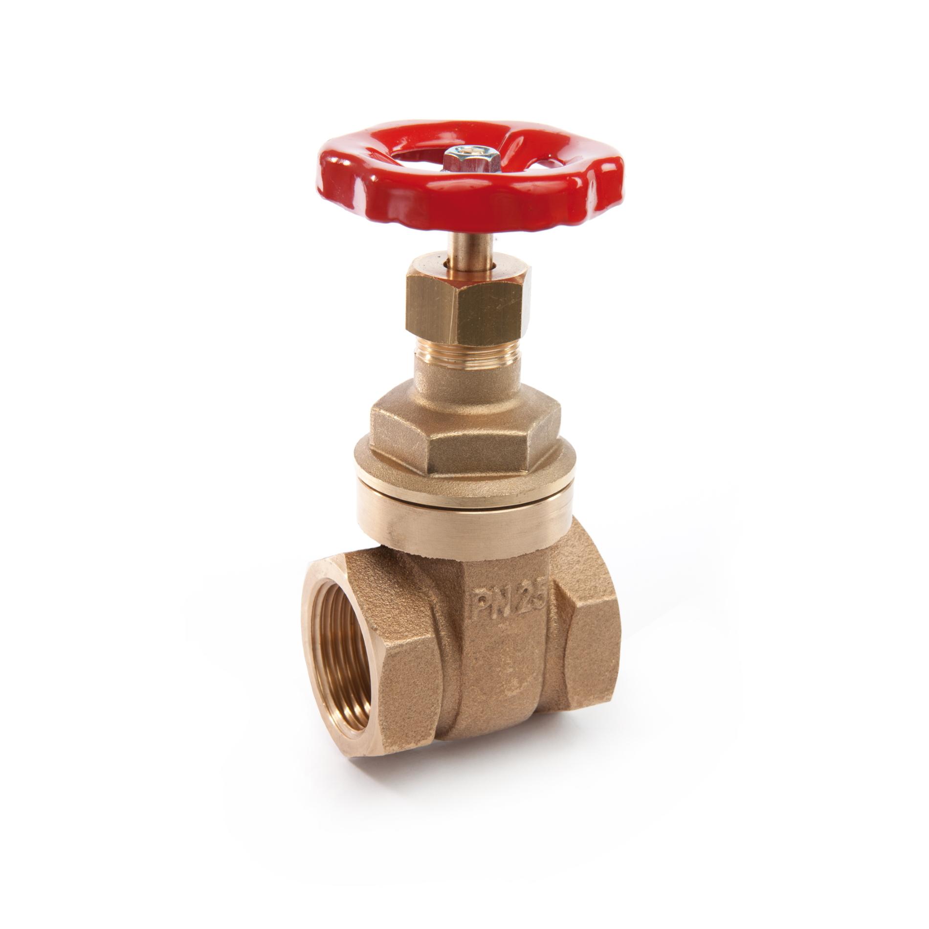 200 Saracinesca bronzo tipo extra pesante Bronze gate valve heavy type FxF PN25
